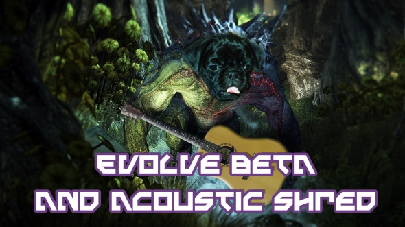 Evolve Acoustic