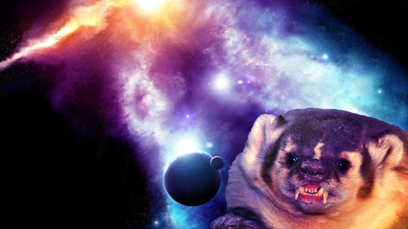 spacebadger